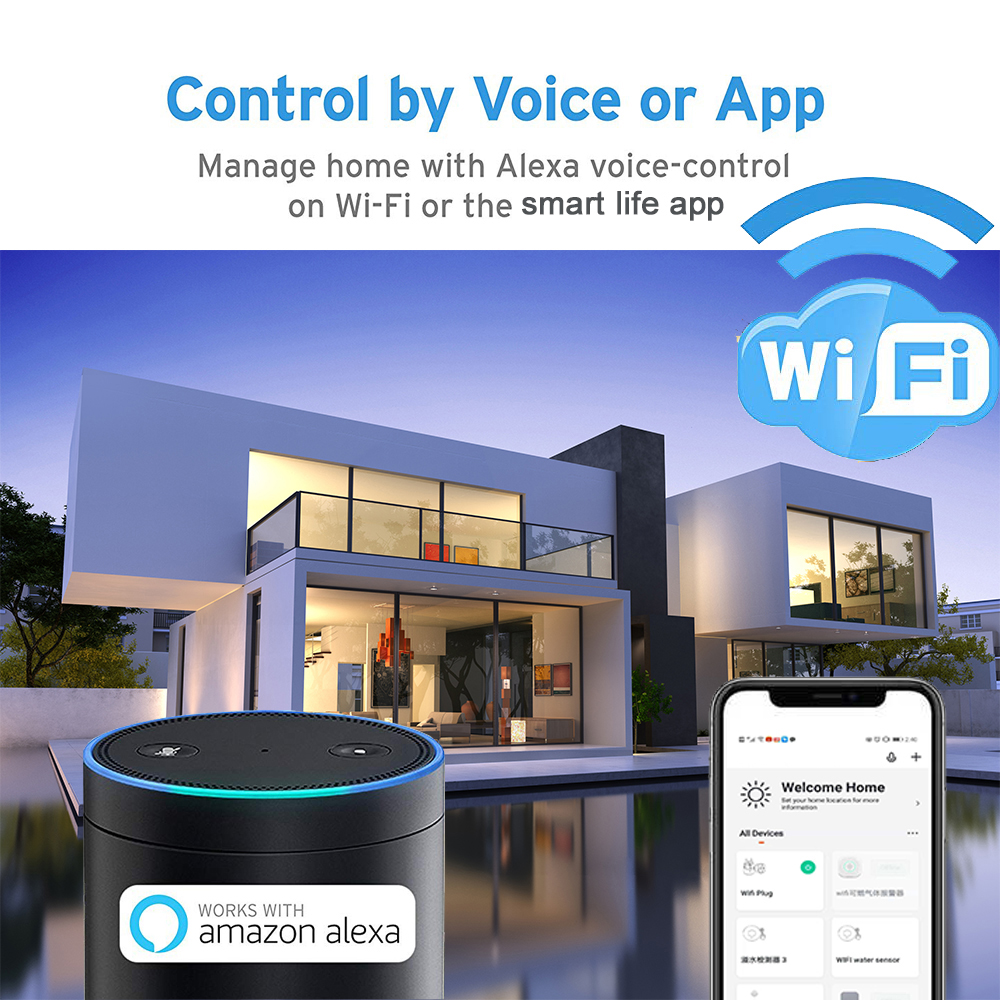 Enerna IoTech Alexa Voice-control Smart Remote Switch Water and Gas Valve Controller