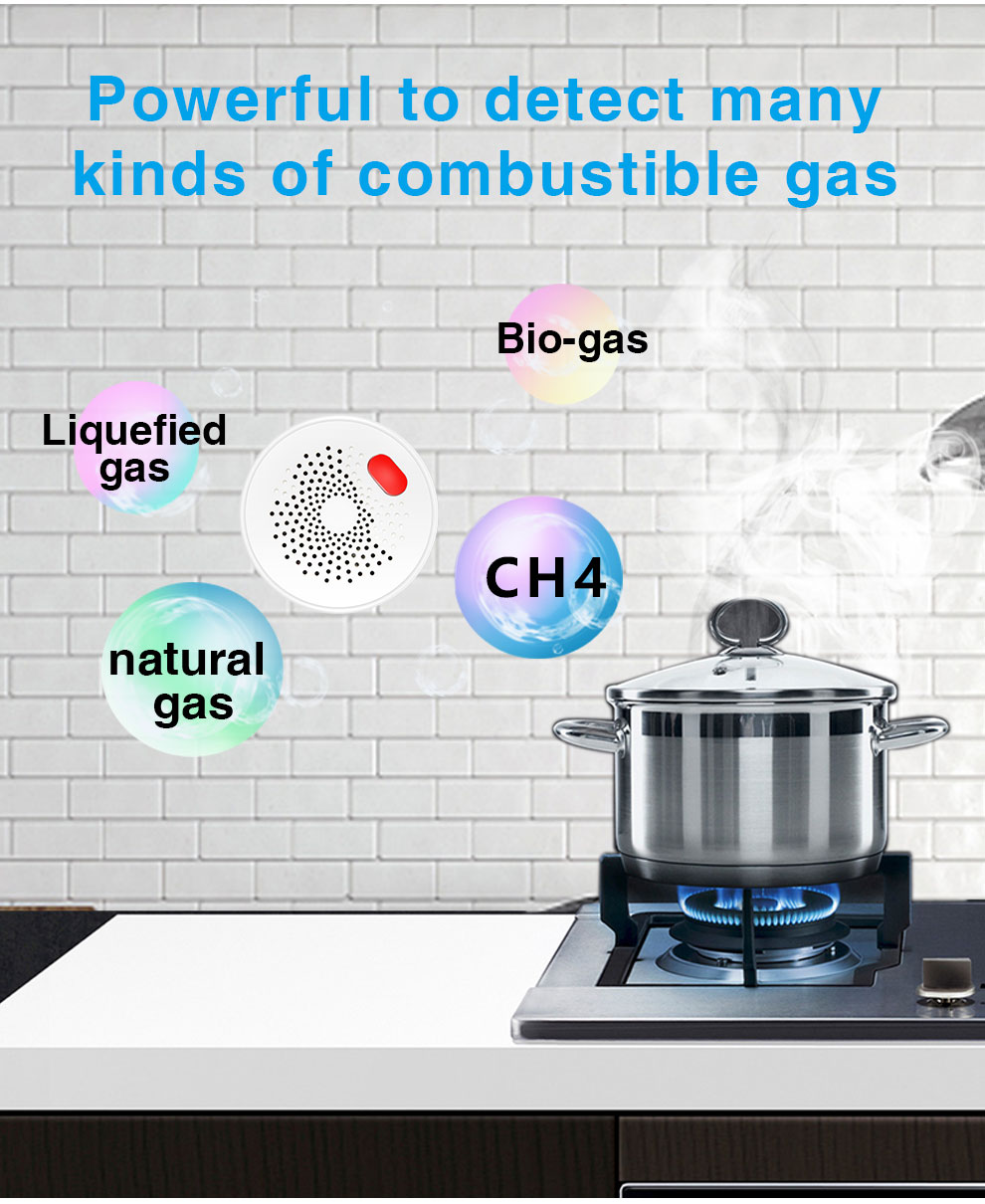 Enerna IoTech WiFi Smart Sensitive Responsive and Loud Alarming Gas Leakage Sensor